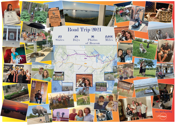 Road trip puzzle with map of road trip route at center & photos from trip all around it
