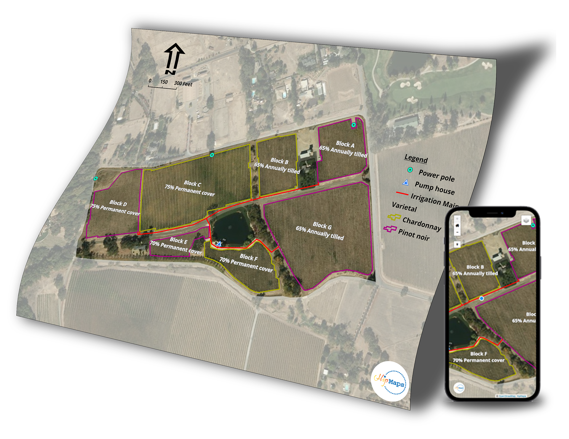 Vineyard Infrastructure Map with Phone